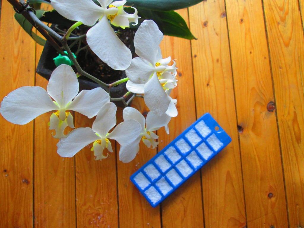 tablettes lave vaisselle : laissez reposer quelques heures